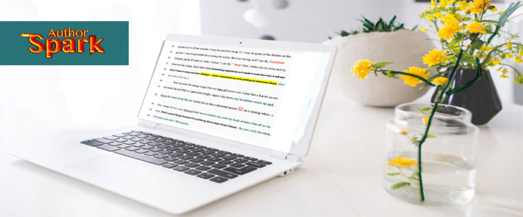 Page of edited text on laptop